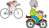 La vespa e la bici