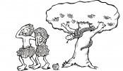 L'enigma di Adamo ed Eva