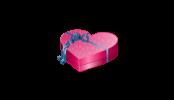 Il regalo di compleanno